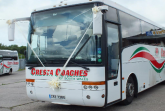 'Vanhool Coach Wedding Trimmed'